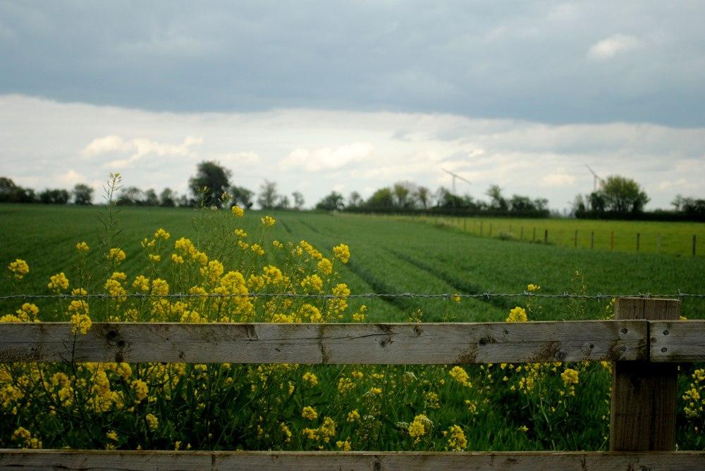 farm-fence-01