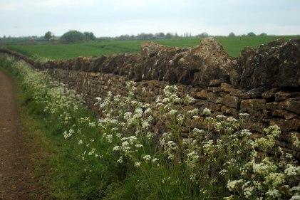 farm-wall-01
